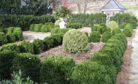 The Boxwood Garden at the Craik-Patton House